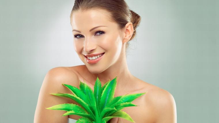 Aloes: internetowy celebryta