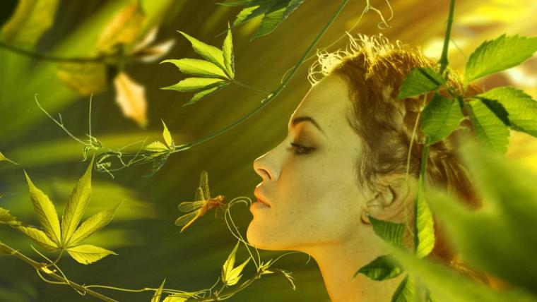 Kosmetyki naturalne - pielęgnacja w stylu eko