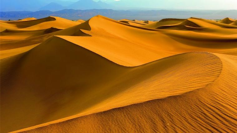 Olej arganowy, złoto Maroka