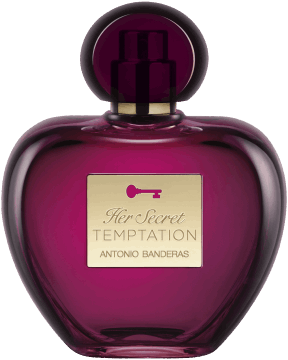 antonio banderas her secret temptation